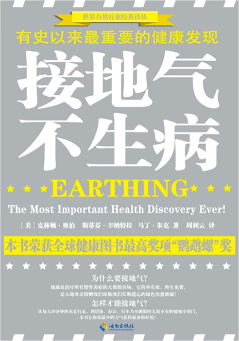Earthing Book Chinese