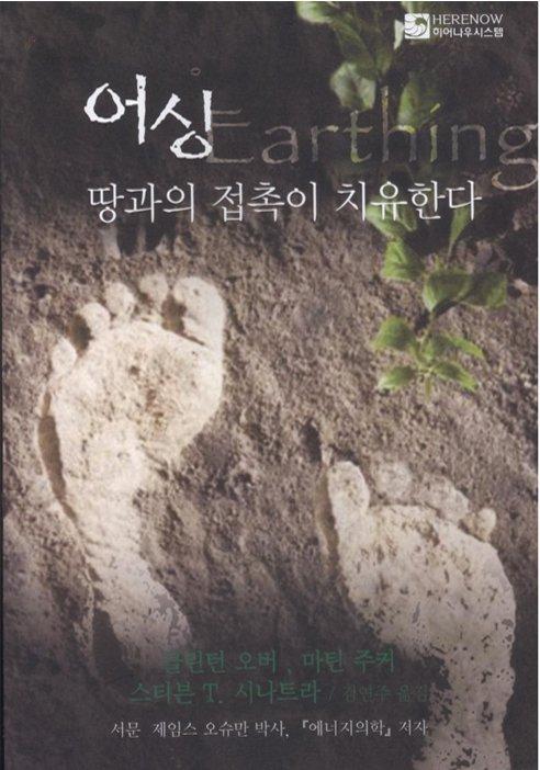 Earthing Book Korean