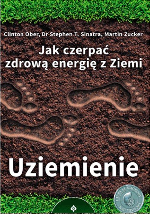 Earthing Book Polish